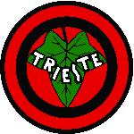 Edera Trieste
